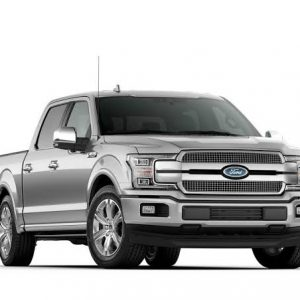 ford-platinum-2019-gris